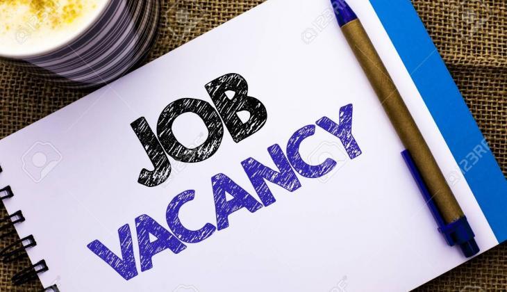 job5.jpg